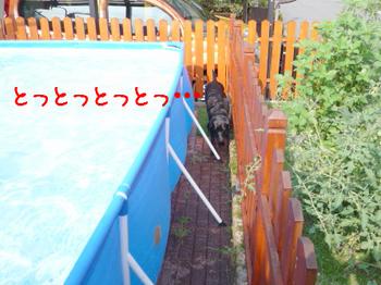 2011.8.29-1.jpg